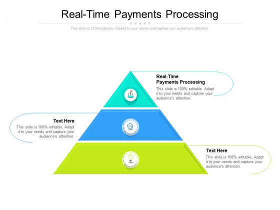 Real Time Payments Processing Ppt PowerPoint Presentation Show Picture Cpb
