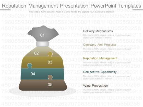 Reputation Management Presentation Powerpoint Templates