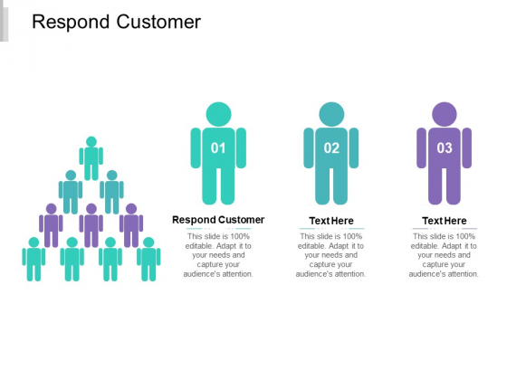 Respond Customer Ppt PowerPoint Presentation Professional Portrait Cpb