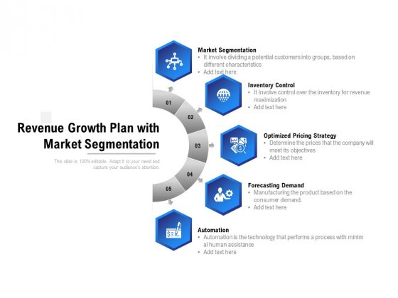 Revenue Growth Plan With Market Segmentation Ppt PowerPoint Presentation Summary Slideshow
