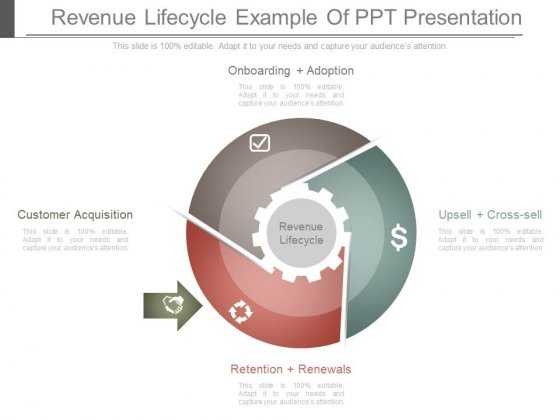 Revenue Lifecycle Example Of Ppt Presentation