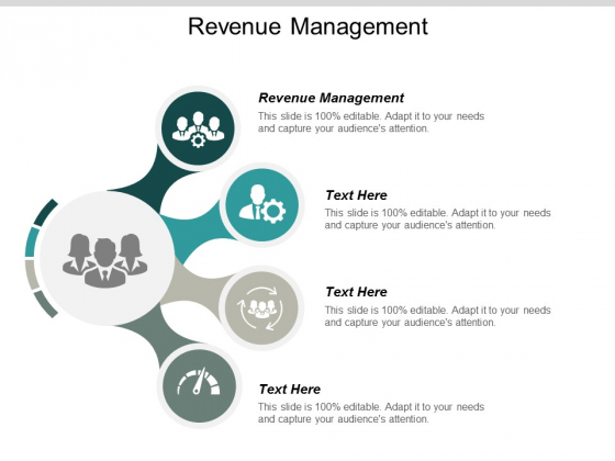 Revenue Management Ppt PowerPoint Presentation Gallery Graphic Tips Cpb