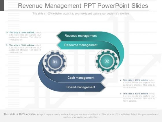 Revenue Management Ppt Powerpoint Slides