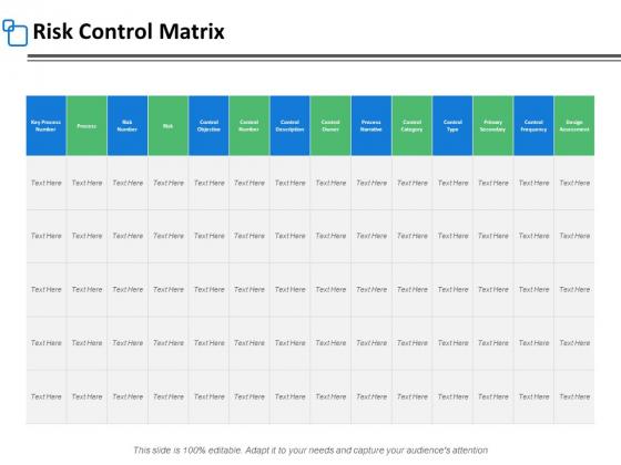 Risk Control Matrix Marketing Ppt PowerPoint Presentation Show Layouts