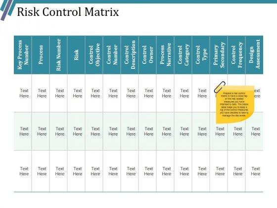 Risk Control Matrix Ppt PowerPoint Presentation Infographic Template Outfit