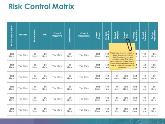 Risk Control Matrix Ppt PowerPoint Presentation Layouts Shapes