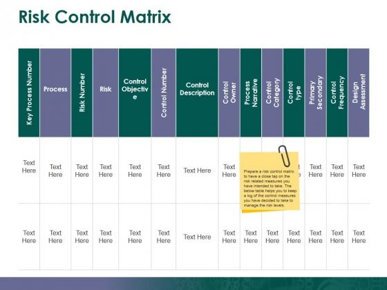 Risk Control Matrix Ppt PowerPoint Presentation Show Design Inspiration