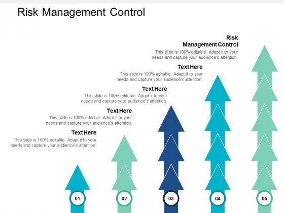Risk Management Control Ppt PowerPoint Presentation Layouts Grid Cpb