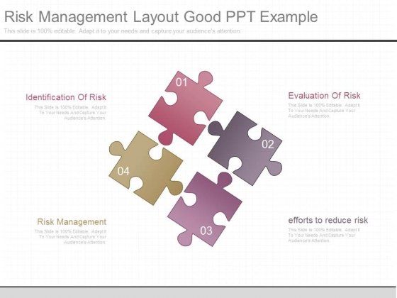 Risk Management Layout Good Ppt Example