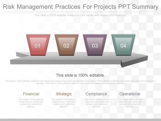 Risk Management Practices For Projects Ppt Summary