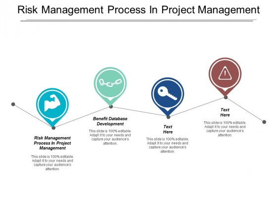 Risk Management Process In Project Management Benefit Database Development Ppt PowerPoint Presentation Ideas Elements