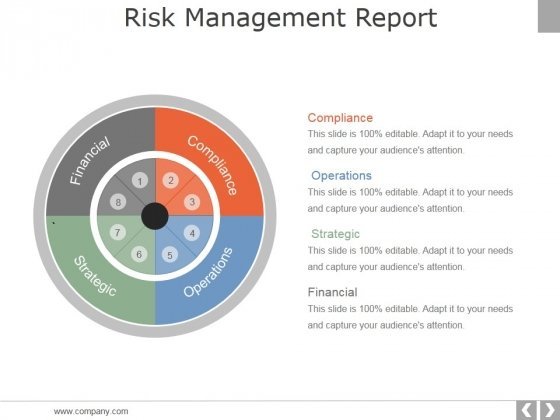 Risk Management Report Template 1 Ppt PowerPoint Presentation Show Background Images