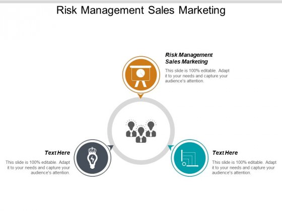 Risk Management Sales Marketing Ppt PowerPoint Presentation File Portfolio Cpb