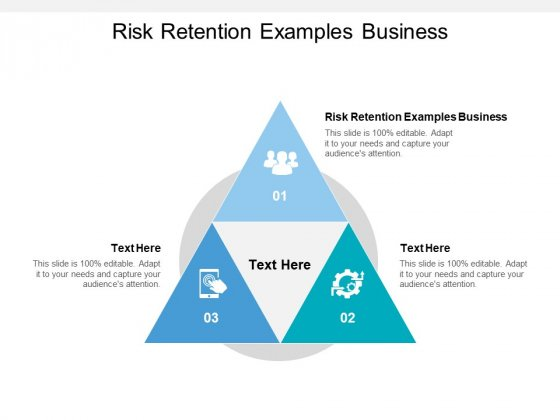 Risk Retention Examples Business Ppt PowerPoint Presentation Show Graphic Tips Cpb