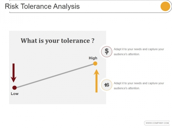 Risk Tolerance Analysis Template 2 Ppt PowerPoint Presentation Picture