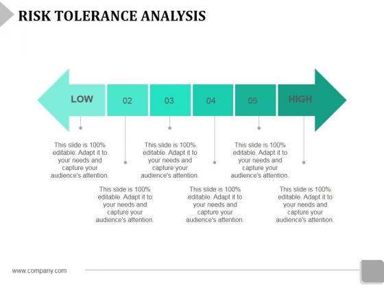 Risk Tolerance Analysis Template 2 Ppt Powerpoint Presentation Slides Infographics