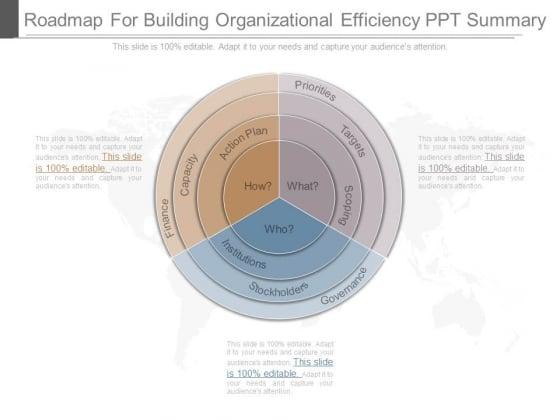 Roadmap For Building Organizational Efficiency Ppt Summary