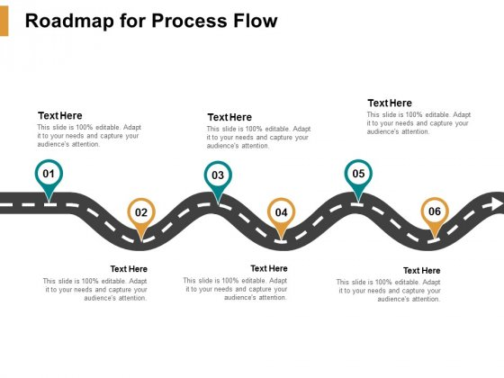 Roadmap For Process Flow Ppt PowerPoint Presentation Outline Backgrounds