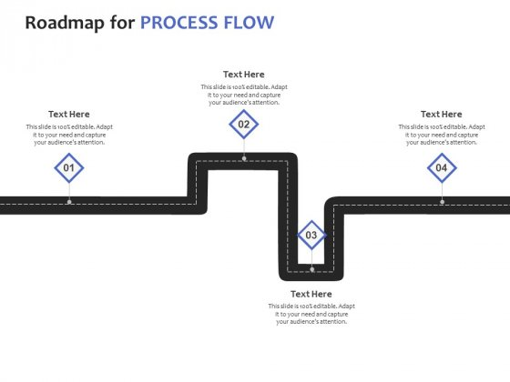 Roadmap For Process Flow Ppt PowerPoint Presentation Styles Portrait