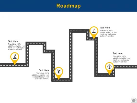 Roadmap Process Management Process Ppt PowerPoint Presentation Portfolio Ideas
