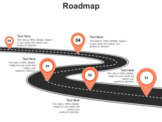 Roadmap Process Ppt PowerPoint Presentation Show Picture
