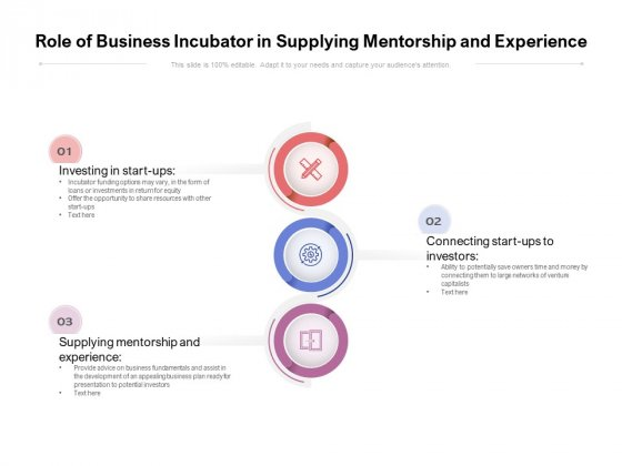Role Of Business Incubator In Supplying Mentorship And Experience Ppt PowerPoint Presentation Summary Structure PDF