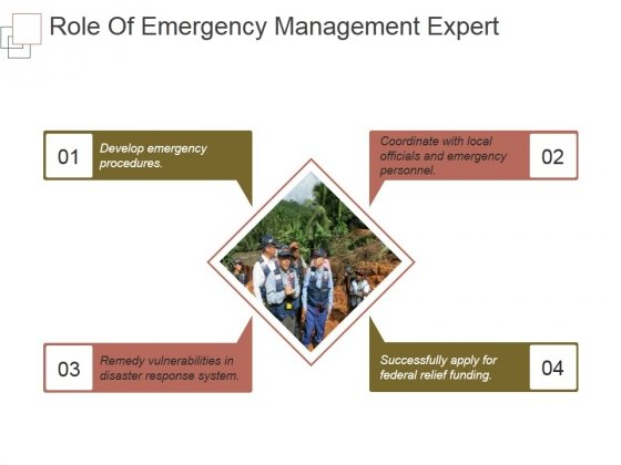 Role Of Emergency Management Expert Ppt PowerPoint Presentation Picture
