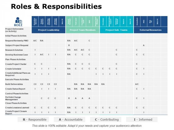 Roles And Responsibilities Ppt PowerPoint Presentation Pictures Background Image