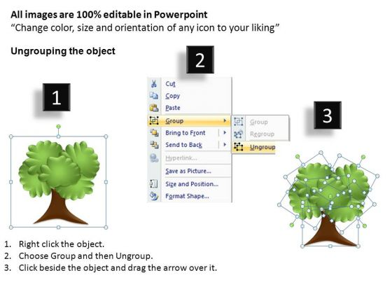 research_family_tree_powerpoint_templates_2