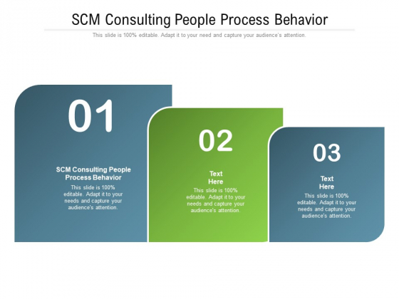 SCM Consulting People Process Behavior Ppt PowerPoint Presentation Layouts Inspiration Cpb Pdf