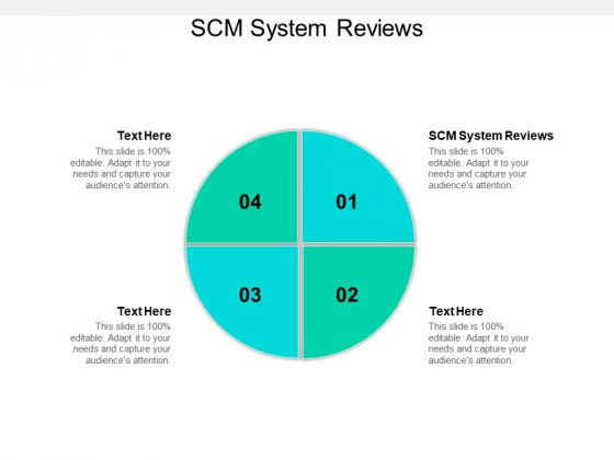 SCM System Reviews Ppt PowerPoint Presentation Model Example Topics Cpb