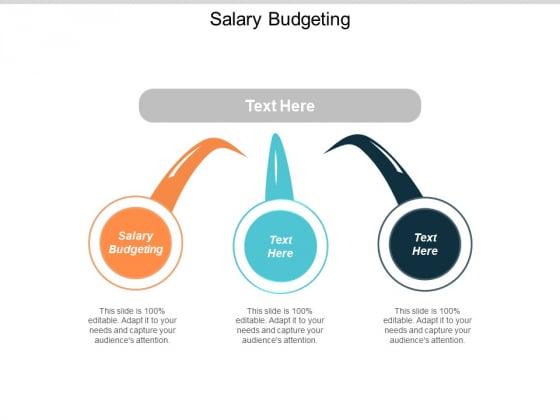 Salary Budgeting Ppt Powerpoint Presentation Professional Slideshow