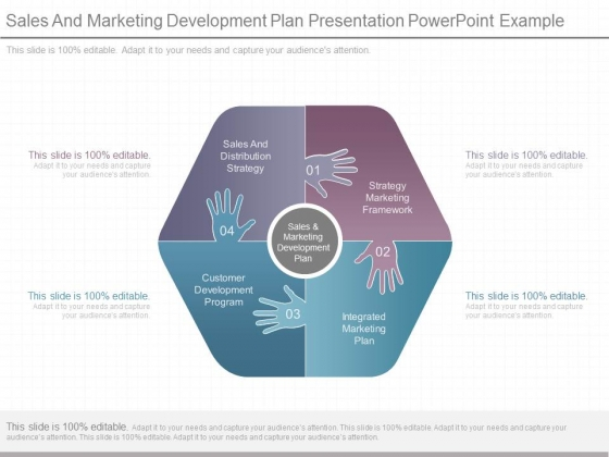 sales and marketing development plan presentation powerpoint example