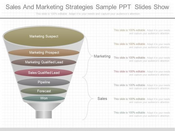 Sales And Marketing Strategies Sample Ppt Slides Show