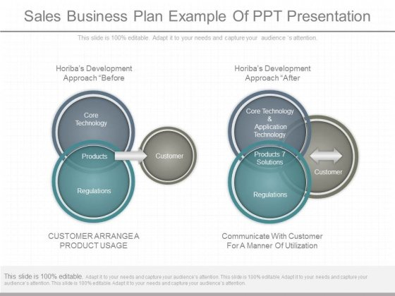 Sales Business Plan Example Of Ppt Presentation