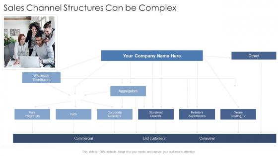 Sales Channel Structures Can Be Complex Startup Business Strategy Ppt Pictures Shapes PDF