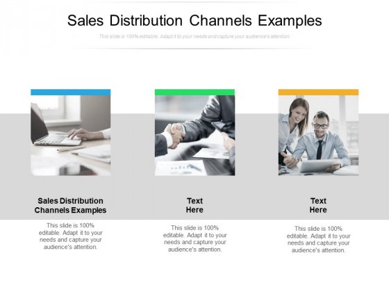 Sales Distribution Channels Examples Ppt PowerPoint Presentation Ideas Outfit Cpb Pdf