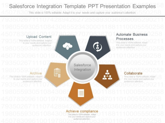Sales Force Integration Template Ppt Presentation Examples