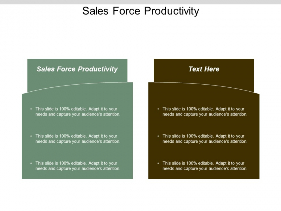 Sales Force Productivity Ppt Powerpoint Presentation Pictures Cpb