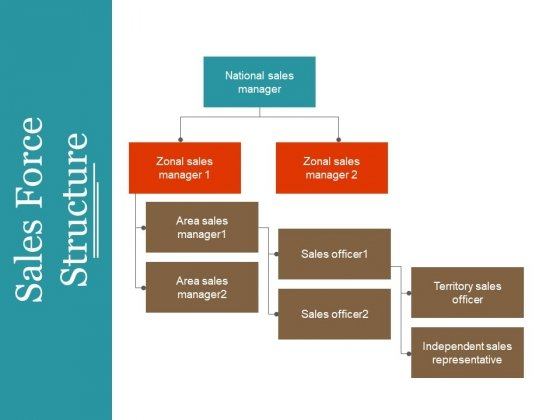 Sales Force Structure Ppt PowerPoint Presentation Outline Guidelines
