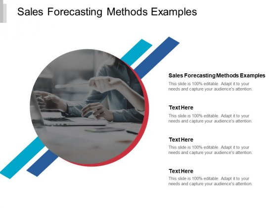 Sales Forecasting Methods Examples Ppt PowerPoint Presentation Professional Graphics Pictures Cpb