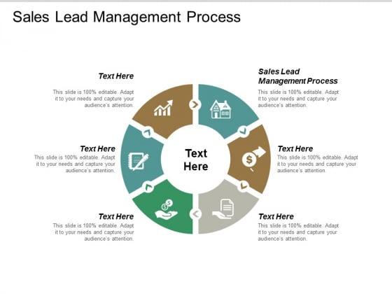 Sales Lead Management Process Ppt PowerPoint Presentation Professional Slide Download Cpb