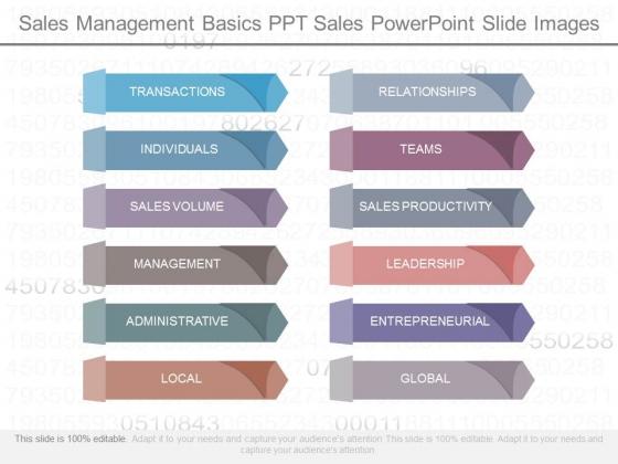 Sales Management Basics Ppt Sales Powerpoint Slide Images