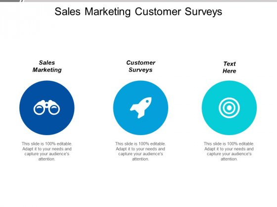 Sales Marketing Customer Surveys Ppt PowerPoint Presentation Ideas Picture