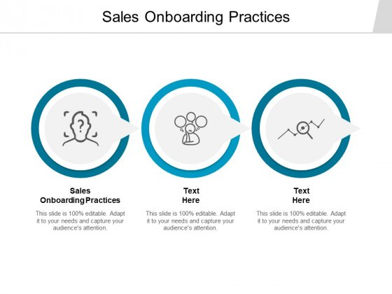 Sales Onboarding Practices Ppt PowerPoint Presentation Model Infographics Cpb