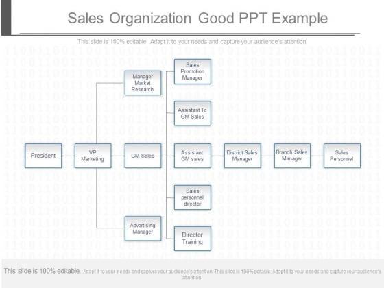 Sales_Organization_Good_Ppt_Example_1