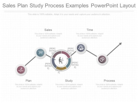 sales plan study process examples powerpoint layout powerpoint