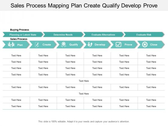 Sales Process Mapping Plan Create Qualify Develop Prove Ppt PowerPoint Presentation Outline Format