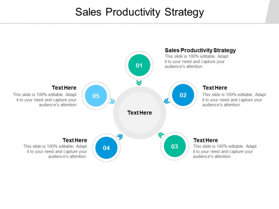 Sales Productivity Strategy Ppt PowerPoint Presentation Outline Picture Cpb