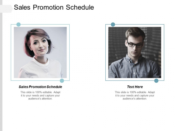 Sales Promotion Schedule Ppt Powerpoint Presentation File Guidelines Cpb